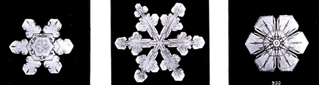 Snowflakes are pretty