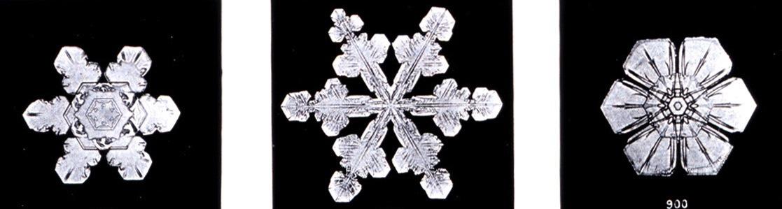 Snowflakes are pretty