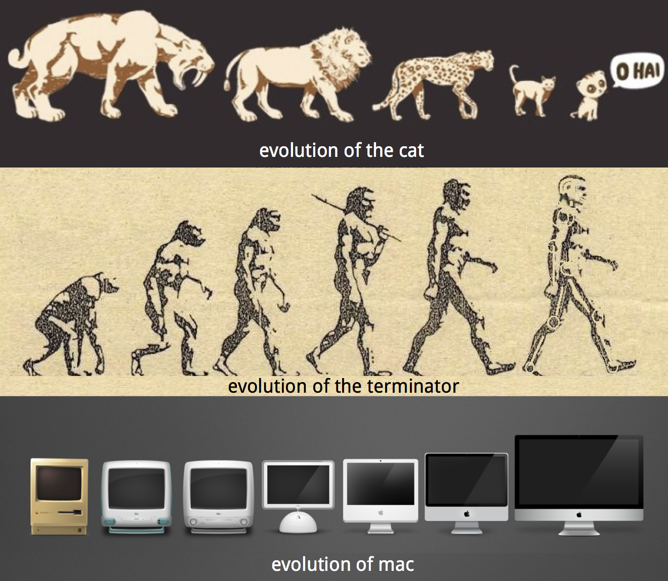 Evolution by Aesthetic Design