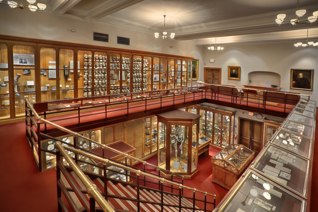Main Gallery of The Mutter Museum