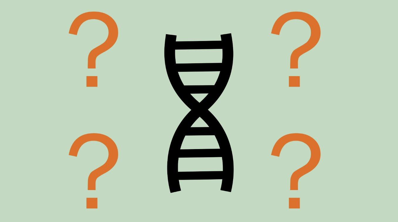 Ella Epstein on genome editing with CRISPR